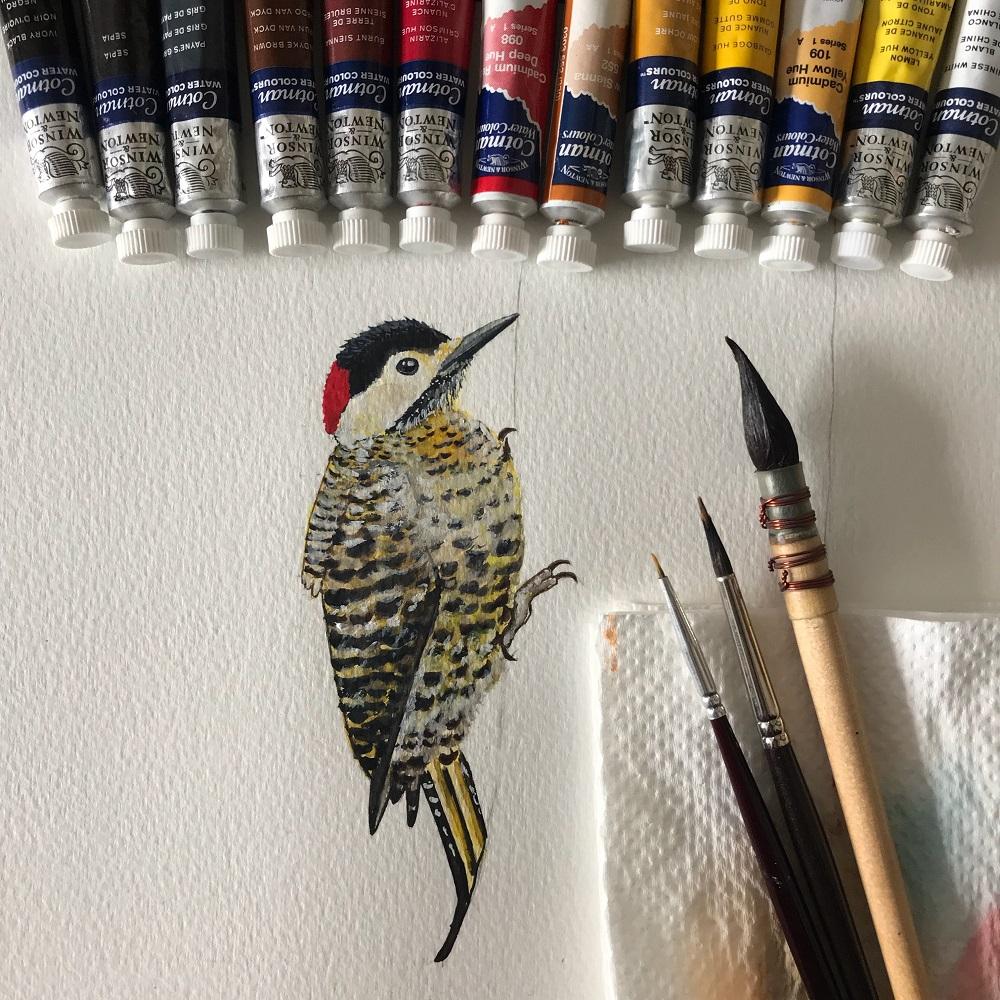 Coloquei estas imagens de aquarelas de pássaros como este pica-pau para mostrar a técnica de Mariana, mas ela trabalha com muitos temas, tanto nos workshops quando em seus trabalhos sob briefing para arquitetos, muitas vezes com propostas geométricas