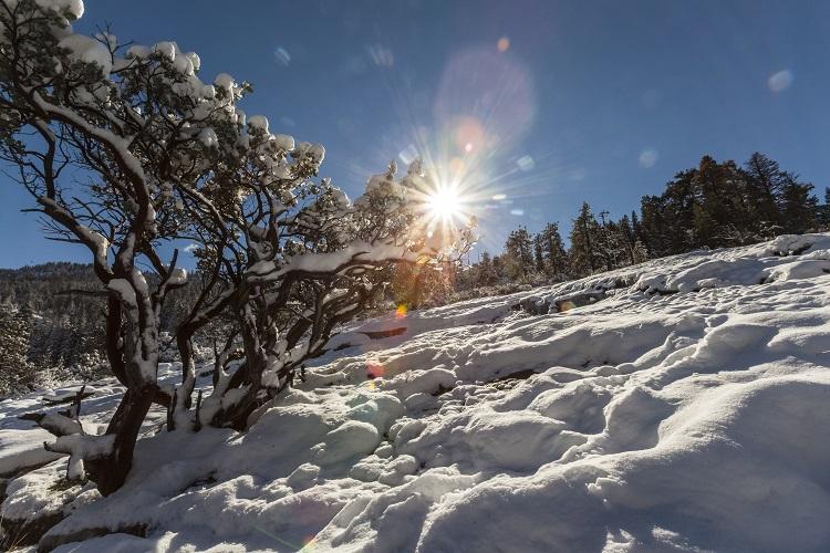 Yosemite (Fotos Eduardo Carneiro)