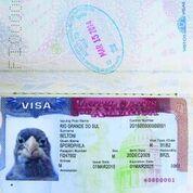 Até passaporte o pássaro ganhou