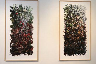 Obras de Dariano expostas na galeria Bolsa de Arte, em Porto Alegre (fotos Studio Prestes)